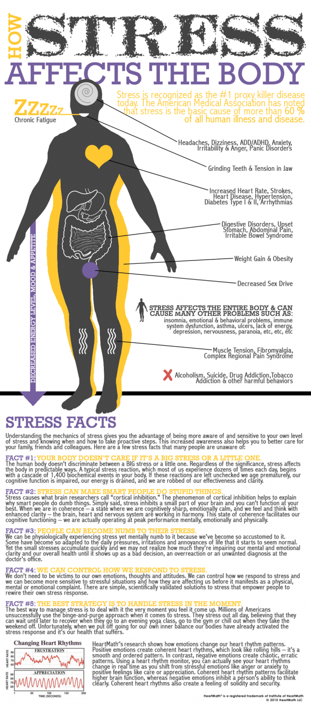 How-Stress-Affects-The-Body-infographic