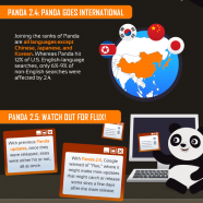 The Google Panda Update One Year Later