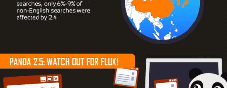 The Google Panda Update One Year Later