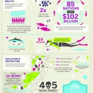 Why Protect Our Oceans