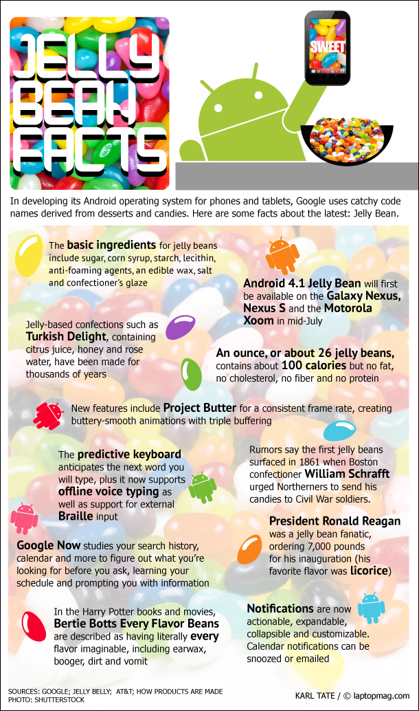 Android-And-Jelly-Bean-infographic