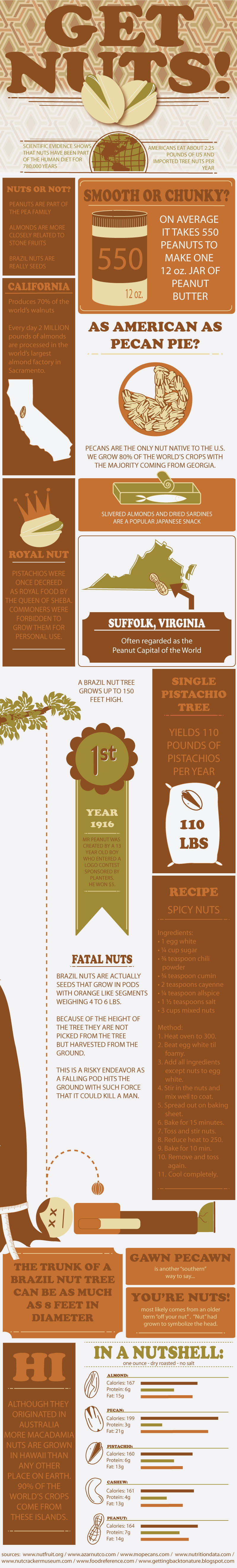 Benefits of Nuts infographic