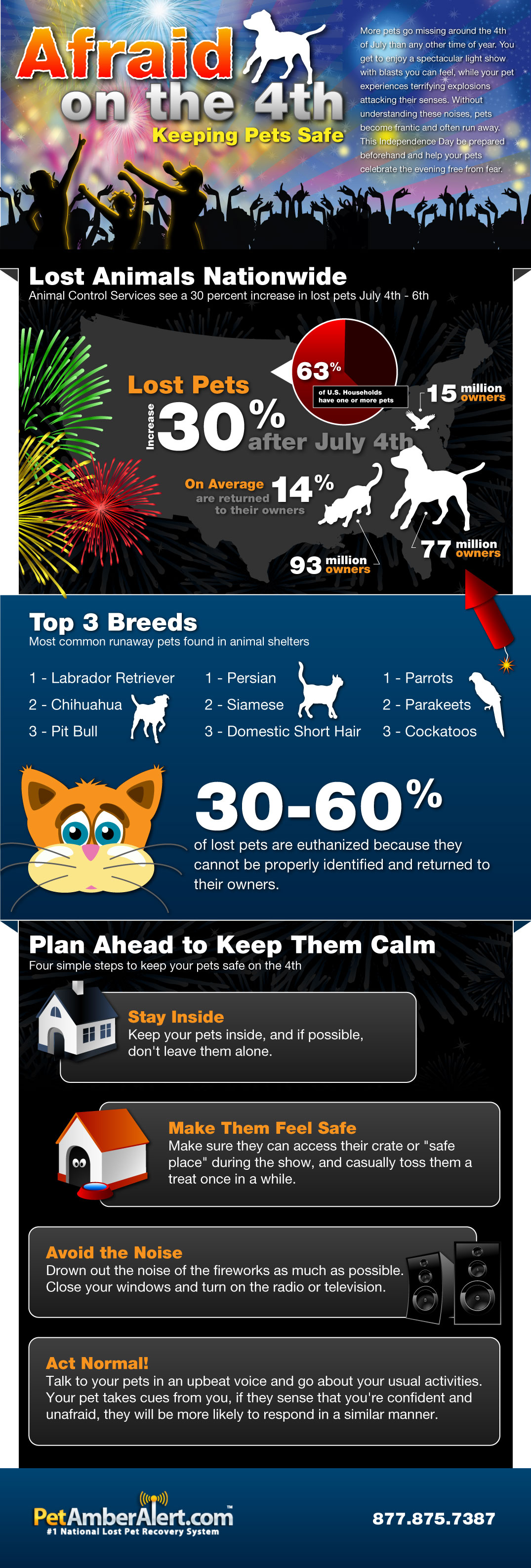 Lost Pets in the US-infographic