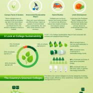 The Greenest College Campuses