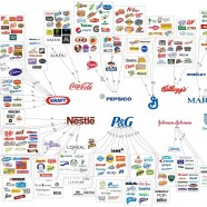 The Illusion Of Brand Choice