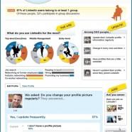 The Linkedin Profile