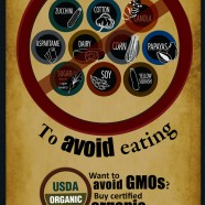 Top Ten Gmo Foods To Avoid