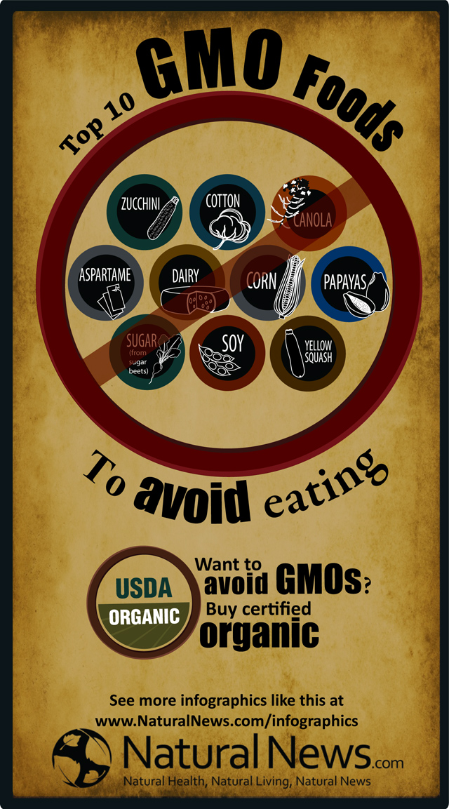 Top-Ten-Gmo-Foods-To-Avoid-Eating-infographi