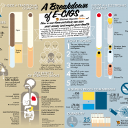 Breakdown Of Electronic Cigarettes