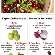 Pesticide Residues Guide