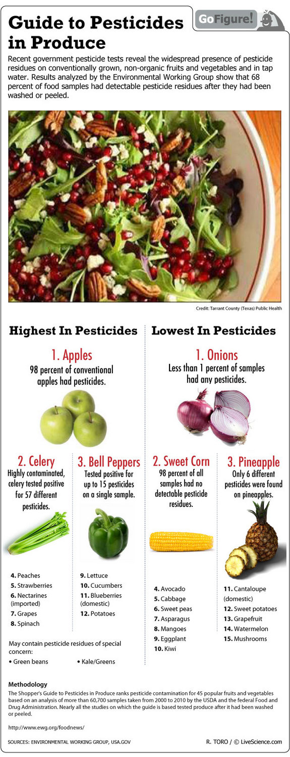 Pesticide Residues Guide Infographic
