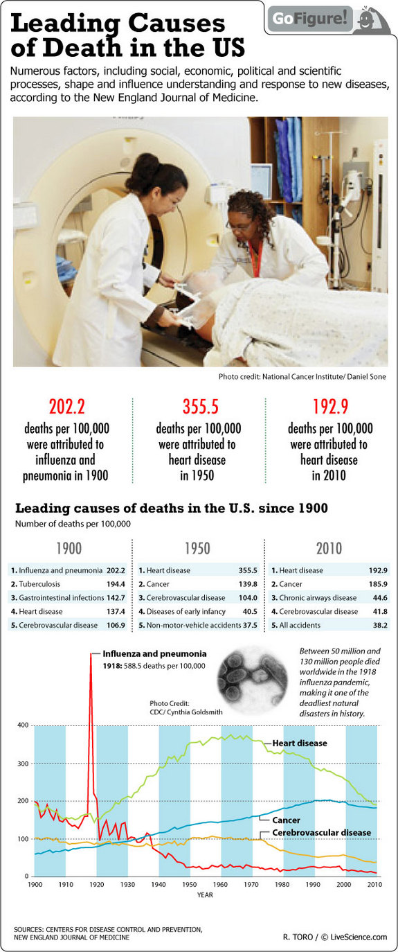 Leading-Causes-Of-Death-In-The-Us-Infographic