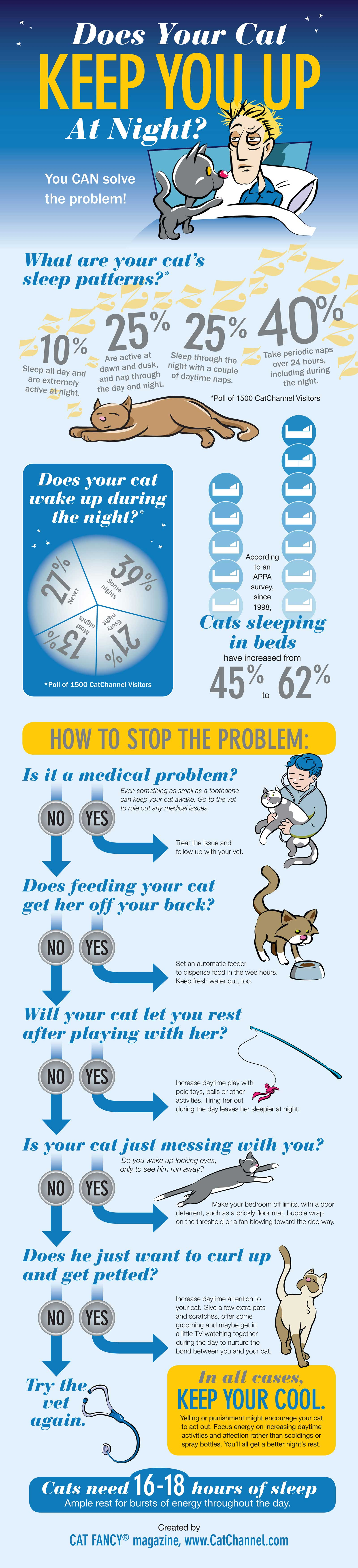 Cat Sleep Habits-Infographic