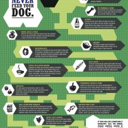 Food Dogs Should Avoid