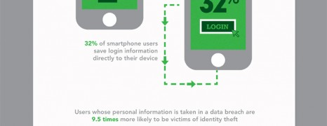 Password Theft Statistics 2012