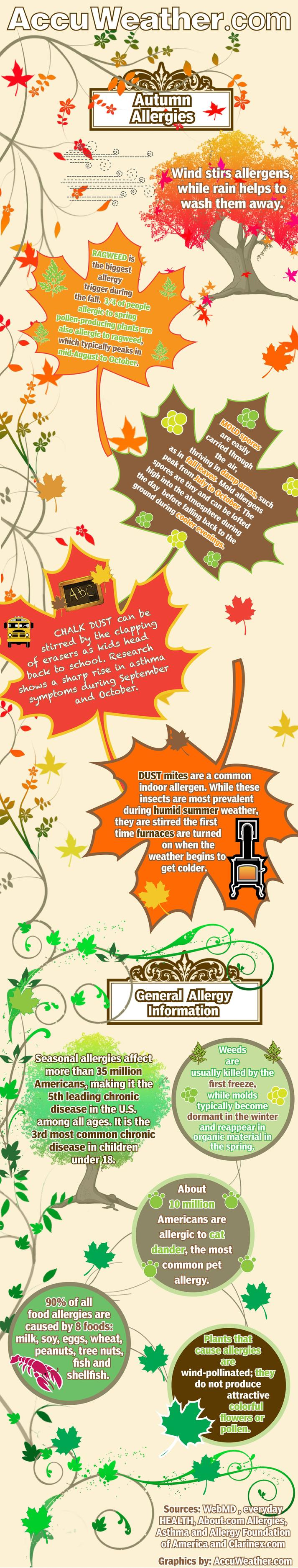 Autumn-Allergies-Infographic