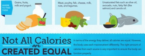 Complete Calorie Guide