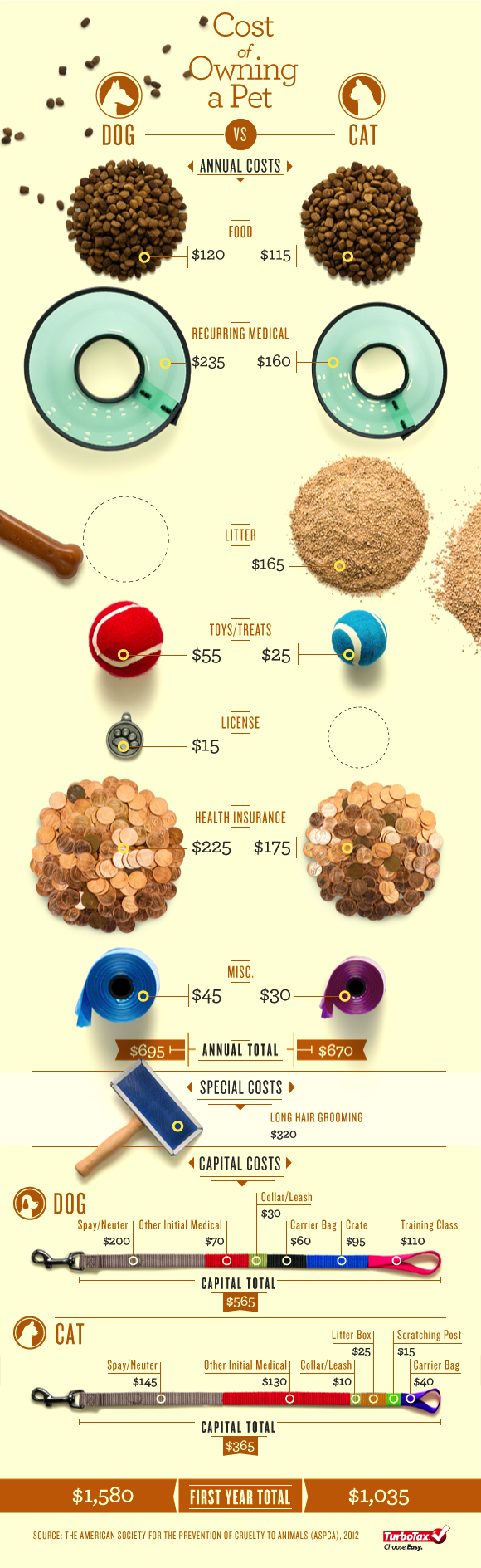 Cost of Dogs and Cats-Infographic
