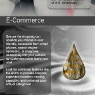 Online Success Guide