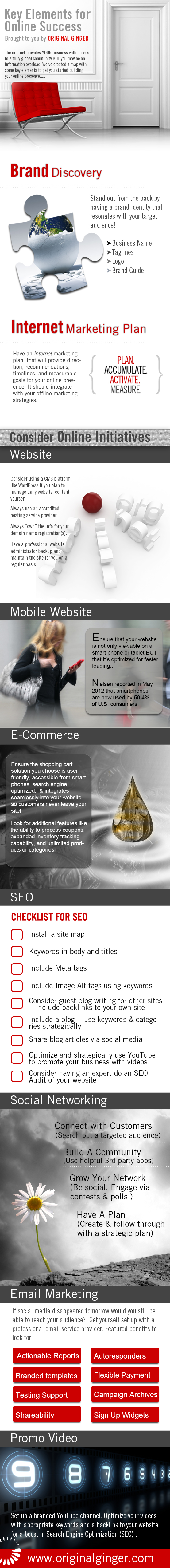 Online Success Guide-Infographic