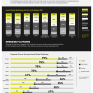 Social Media Marketing Value