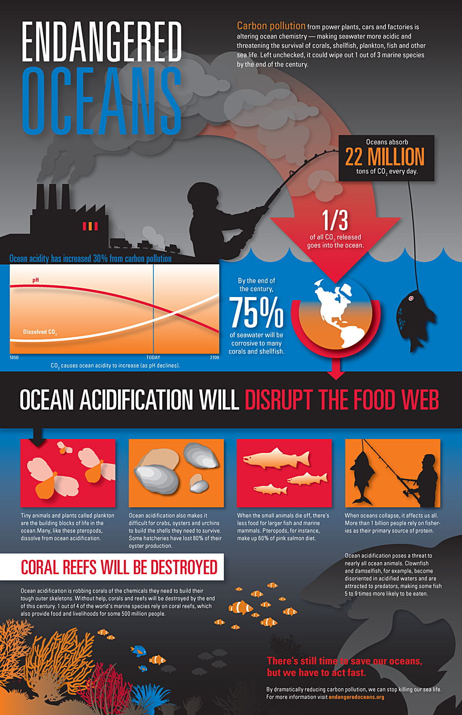 Oceans Carbon Pollution-Infographic