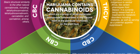 Weed Vaporizer vs Smoking