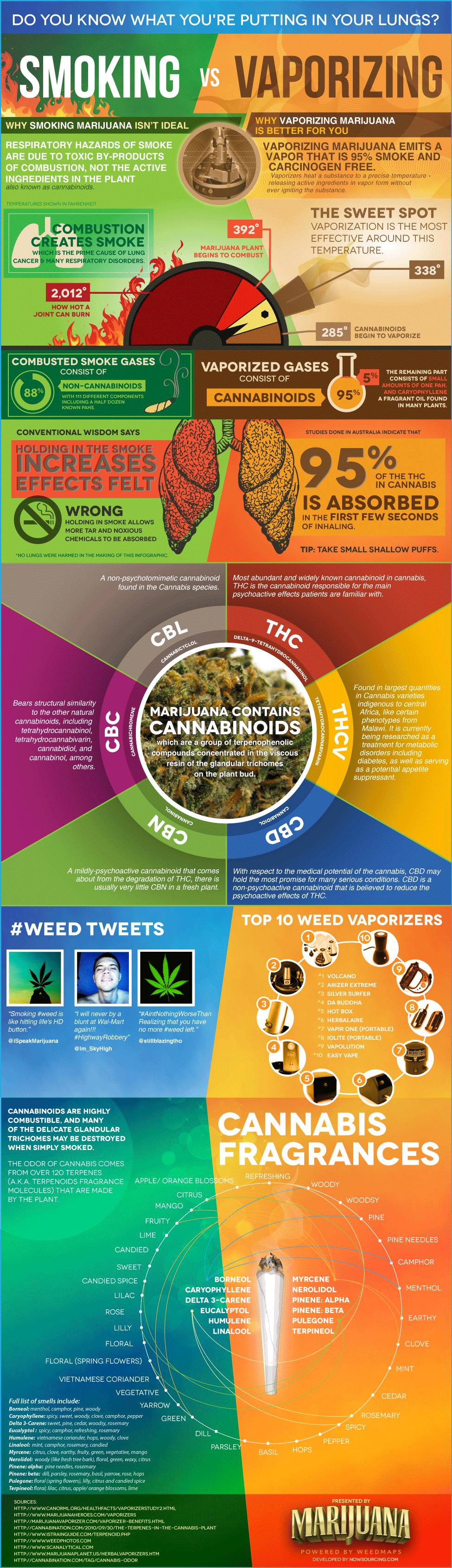 Weed Vaporizer vs Smoking-Infographic