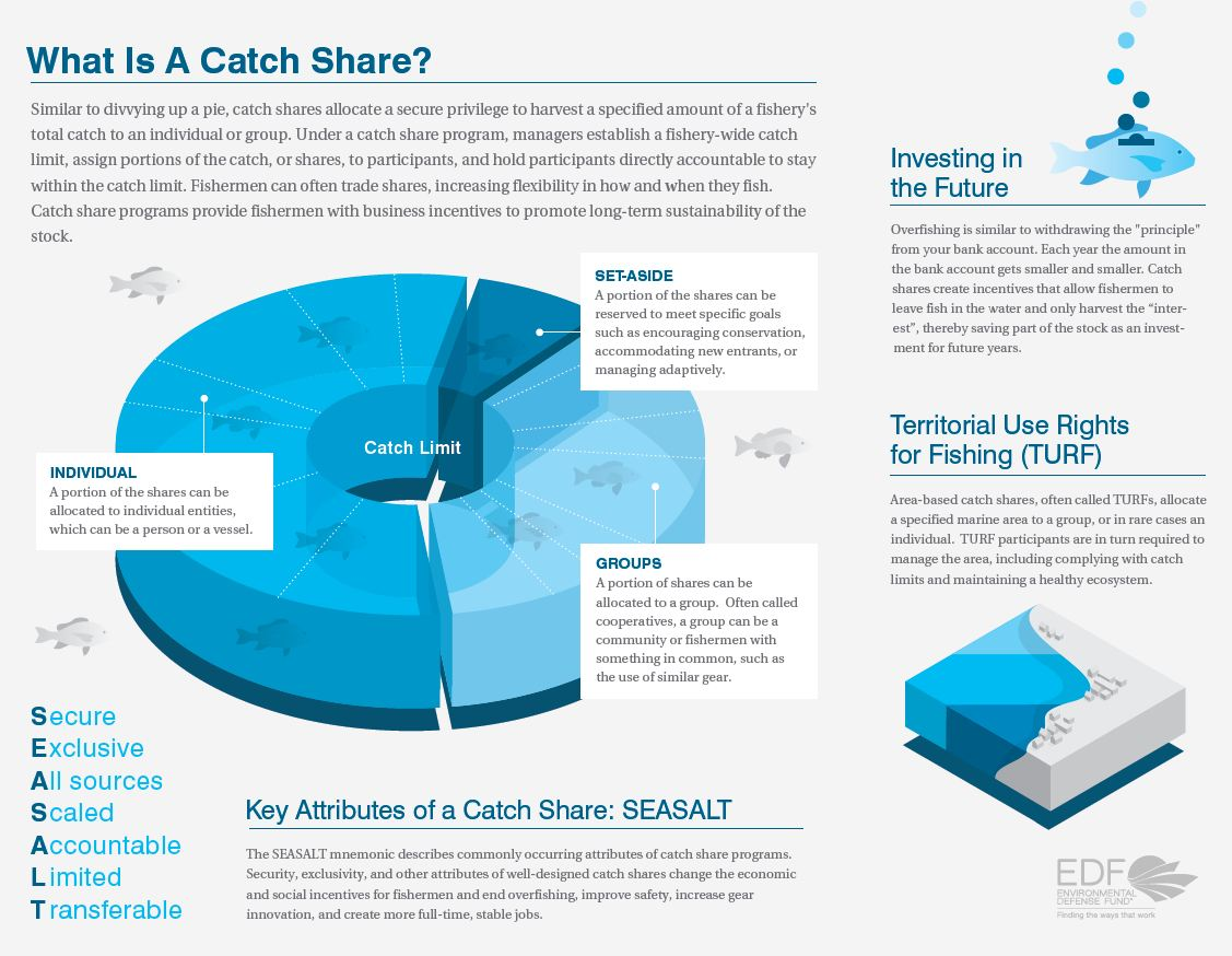 Fishery Catch Share Definition-Infographic