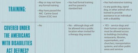 Companion Dog Types