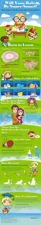 Super Smart Babies-Infographic