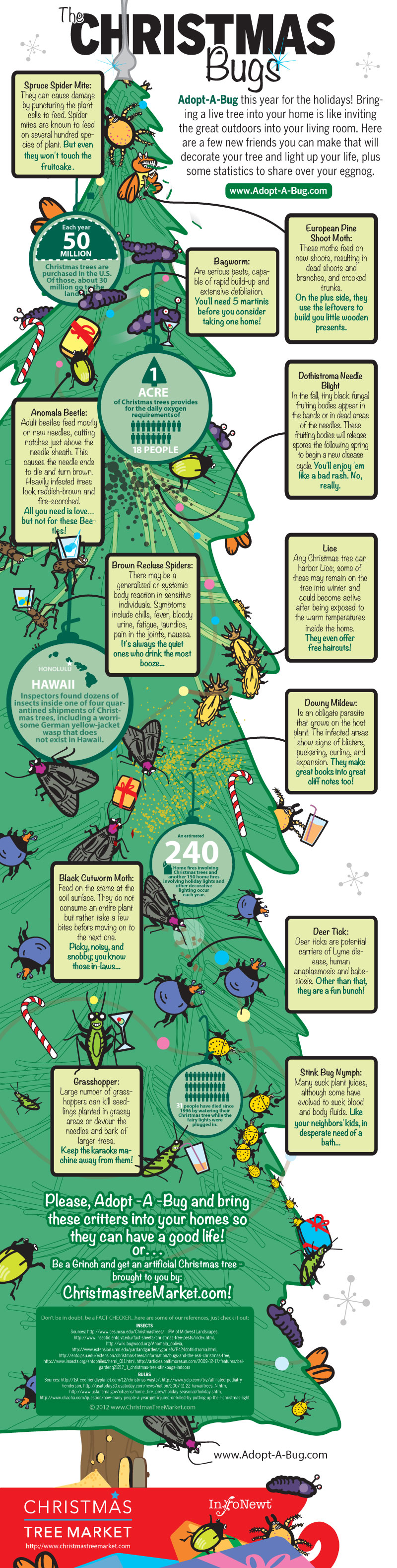 Christmas Tree Bugs-Infographic