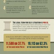 Self Litigation Risks