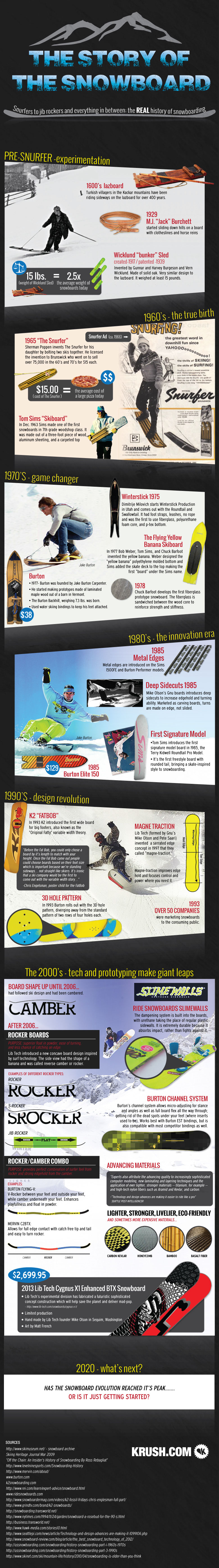 Snowboard Chronicles-Infographic
