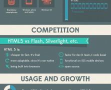 Embracing HTML5