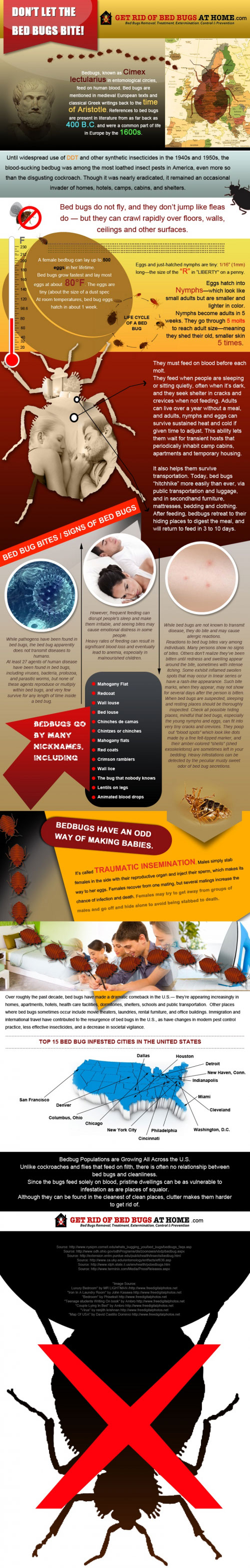 Fighting Bed Bugs-Infographic