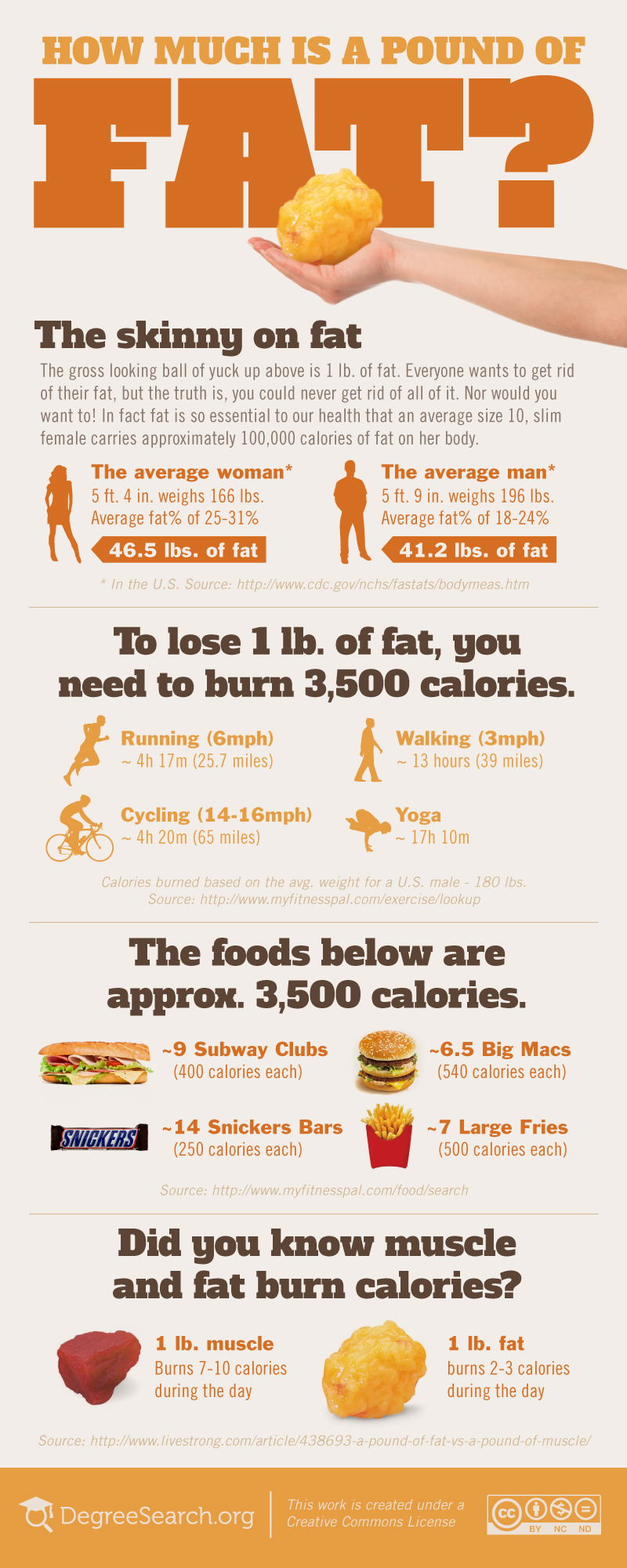 Counting Fat-Infographic