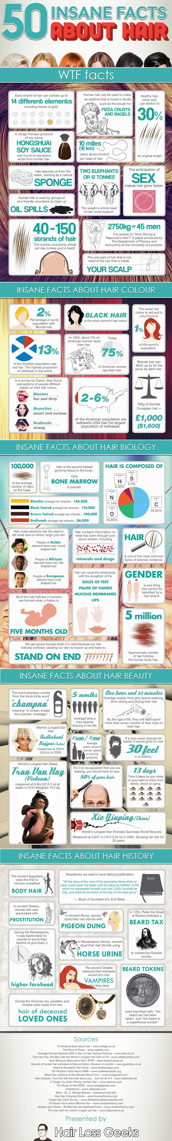 All About Hair-Infographic