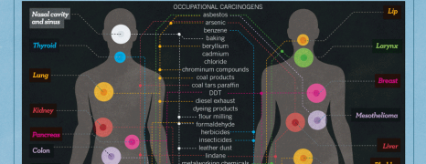 Carcinogen in Daily Life