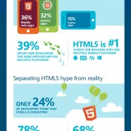 HTML5 vs Native vs Hybrid