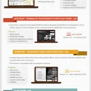 Popular Premium WordPress Themes 2013