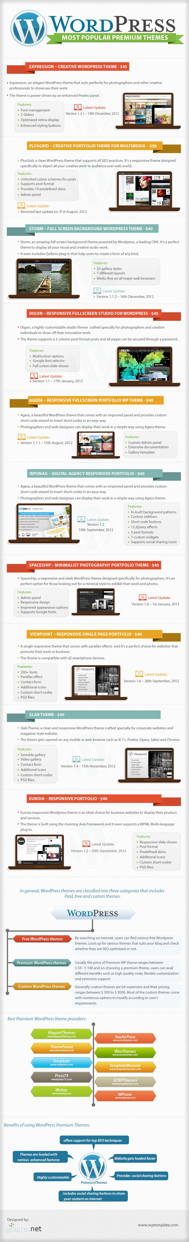 Popular Premium WordPress Themes 2013-Infographic