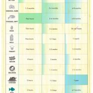 Food Preservation Guide