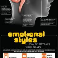 Brain Emotional Processing
