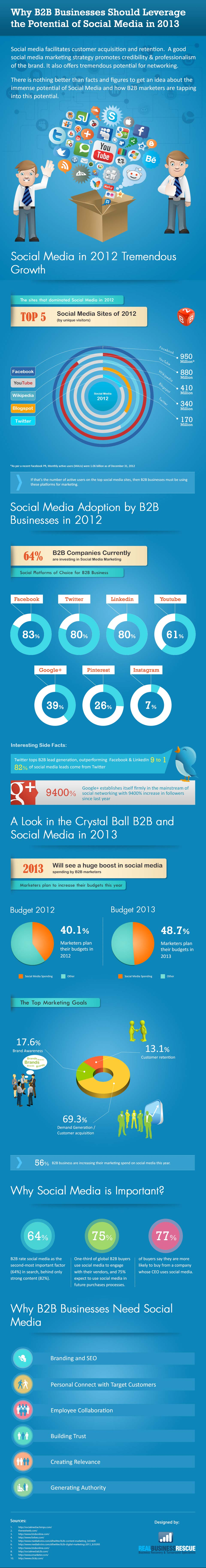 B2B Social Media Opportunities 2013-Infographic