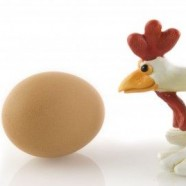 Chicken or the Egg Paradox