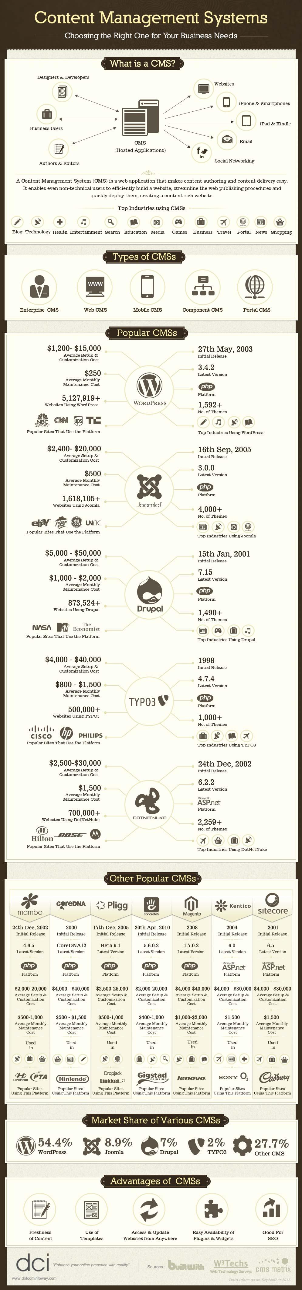 CMS Market Breakdown-Infographic