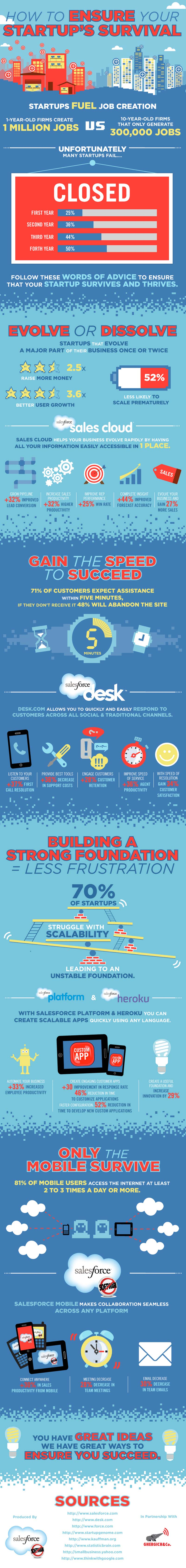 What Startups Need-Infographic