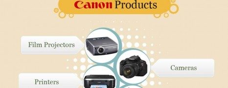 Canon vs Nikon Market Share 2010