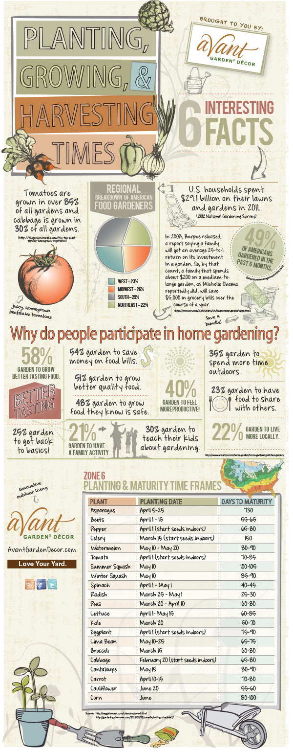 US Home Gardening-Infographic